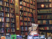 Lose yourself in one of New York's old-fashioned book shops. This is The Mysterious Book Shop in LowerManhattan.