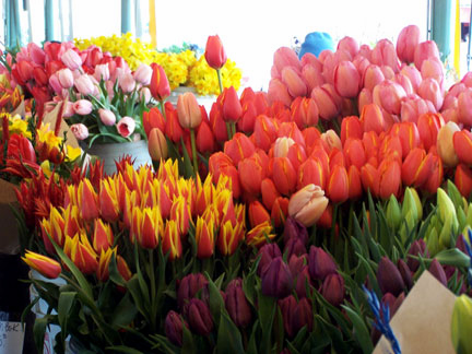 Great flowers at great prices in Pike Market
