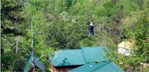 Tree Flight Canopy Tour